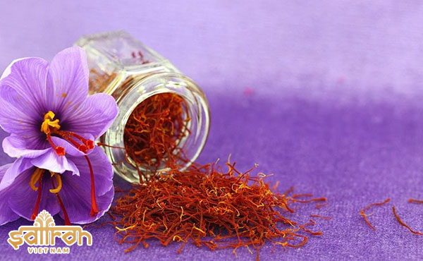 Tác dụng của nhụy hoa nghệ tây đối với sức khỏe