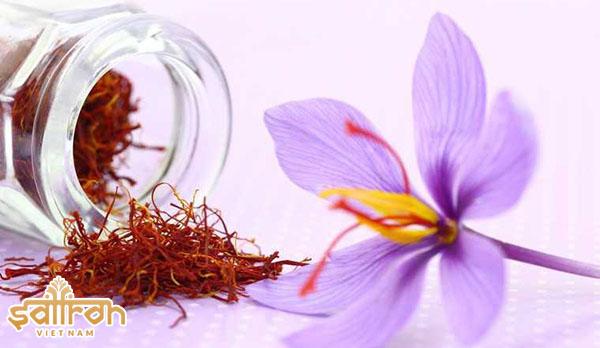 Liều dùng saffron và đối tượng sử dụng