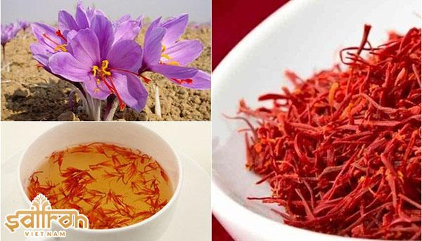 Tác dụng thần kì của saffron
