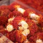 5 loại nhụy hoa nghệ tây Iran tại Việt Nam