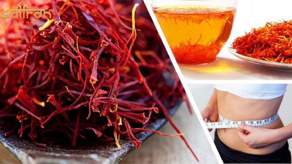 Saffron có tác dụng tiêu hao mỡ thừa trong cơ thể