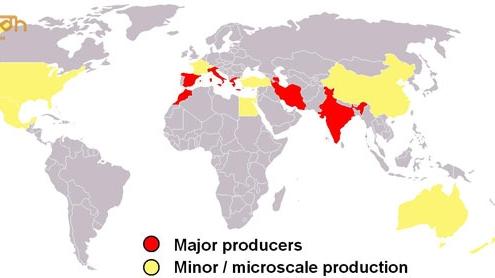 """Saffron Tây Á - Những đất nước Tây Á sở hữu """"mỏ"""" Saffron"""