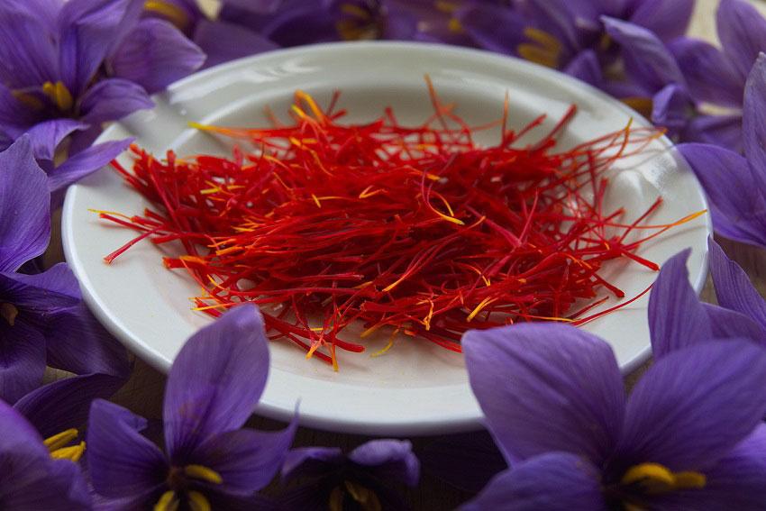 Những hoạt chất vô giá trong Saffron