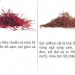 Saffron b畛�畉� c坦 d湛ng �動畛� ti畉� kh担ng?
