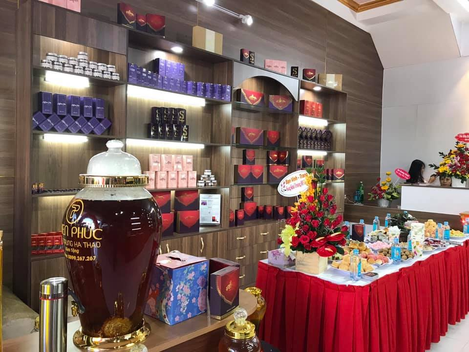 khai truong showroom saffron vietnam
