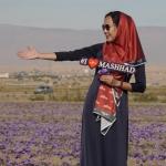 Mashhad Iran - N董i nh畛�g s畛� saffron cao c畉� nh畉� �動畛� s畉� xu畉�
