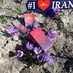 Saffron Iran giá bao nhiêu, tưởng đắt nhưng lại bình dân bất ngờ
