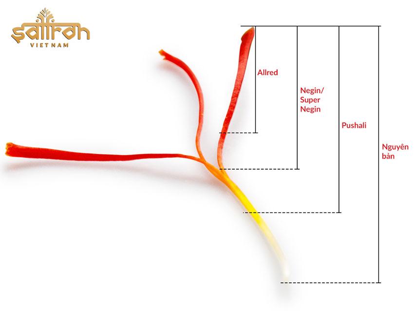 Saffron Negin Iran