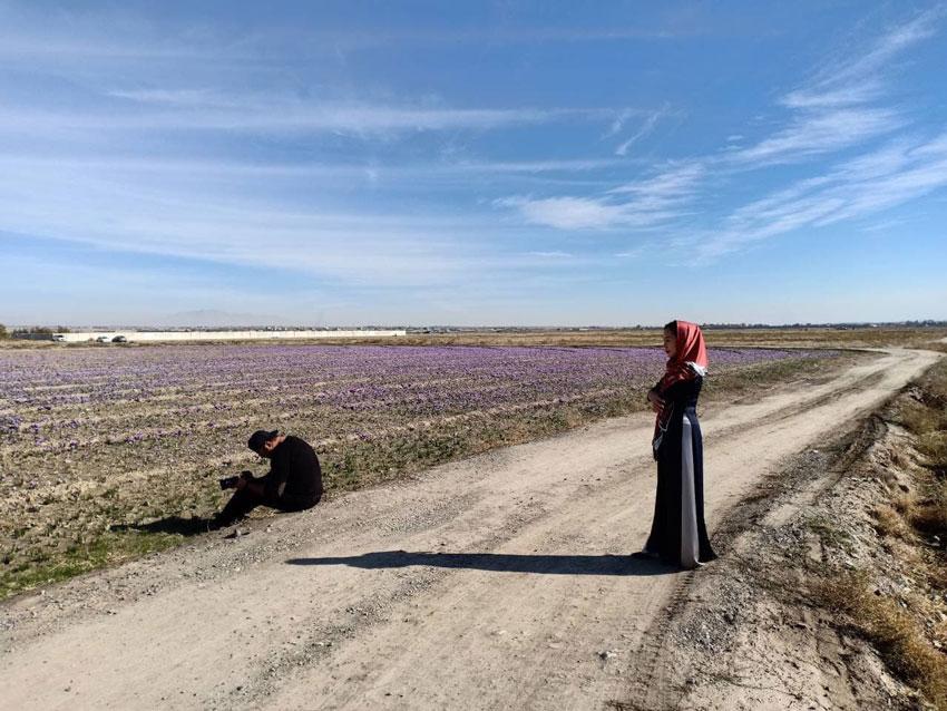 Saffron - v�n h坦a v� truy畛� th畛�g c畛� ng動畛� d但n Iran